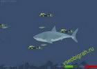 Играть в игру  Mad Shark